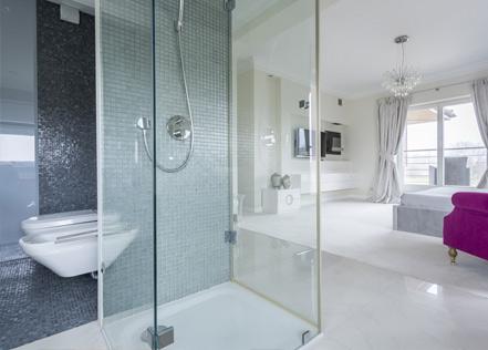 Douche à parois vitrées
